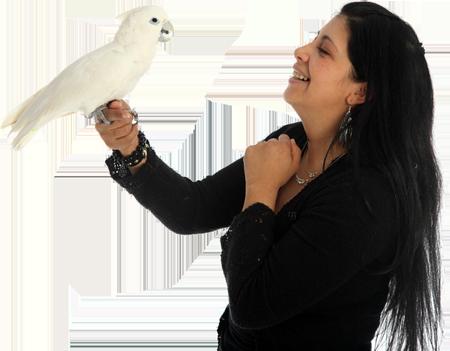 birdbox_papegaai