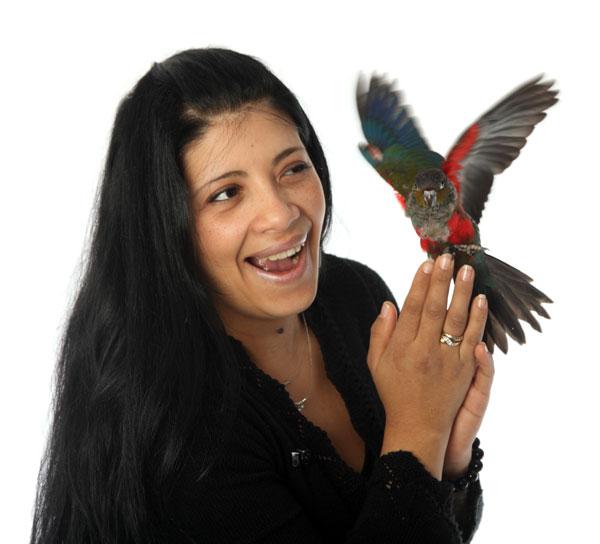 papegaai trainen